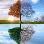 Seasons of Life